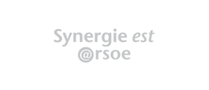 synergie-1-300x130.png